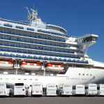 cruise ship excursion tauranga